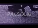 By 太PANGOLIN太