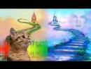 Цвета Солнечной Феи и Снежной Королевы _ Теплые и холодные цвета для детей – Развивающий мультик