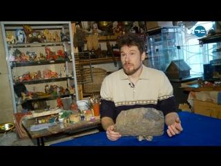 Тюменец нашел метеорит