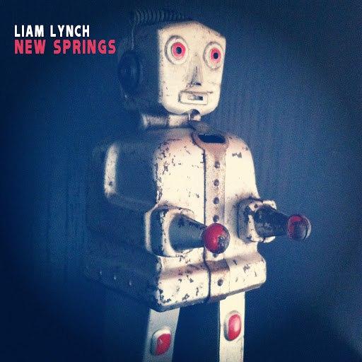 Liam Lynch альбом New Springs