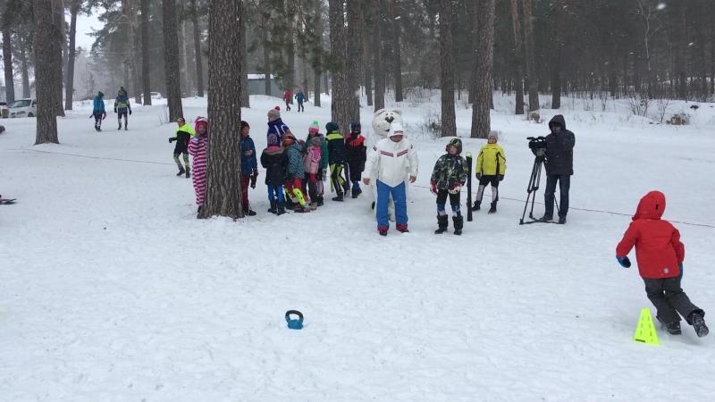 Кот Снежок на Слалом Гигант 4 марта 2018 года