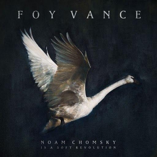 Foy Vance альбом Noam Chomsky Is A Soft Revolution