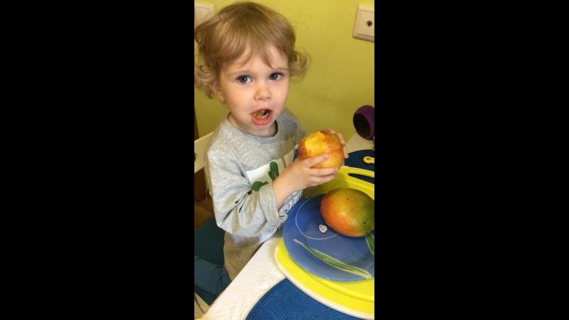 Любимый едок персиков и манго