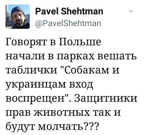https://pp.userapi.com/c840725/v840725777/40a56/brU_V3NT-wg.jpg