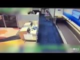 В США пассажир пытался попасть в самолет вместе с багажом