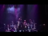 Swing &amp Latin Fever