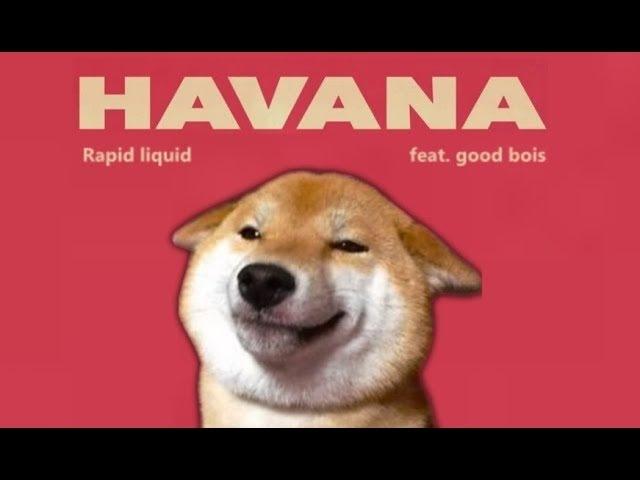 Havana - Shibe cover