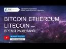 Bitcoin, SiaCoin, Stratis, BNB, Ethereum, Litecoin — время раздумий | Прогноз цены Криптовалюты