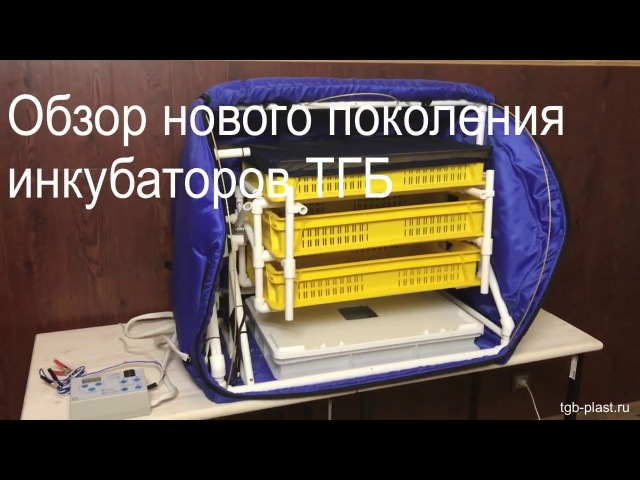 инкубатор ТГБ-пласт обзор новой модели