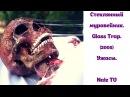 🎬 Стеклянный муравейник. Glass Trap (2005) Ужасы на Naiz TV 🎬
