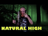 Hammerfall - Natural high (vocal cover)