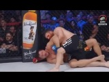 Roy Nelson vs. Matt Mitrione 2 FULL FIGHT