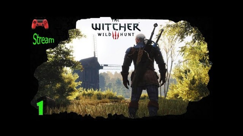 The Witcher 3 Wild Hunt 👍 WIRT 👍 1