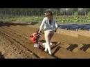 Primitive Technology vs World Modern Agriculture Progress Mega Machines Harvester Collector Tractor