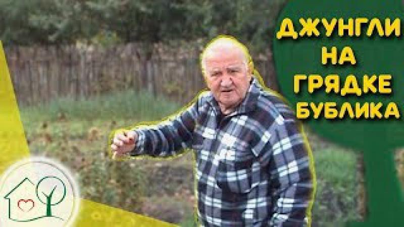 Бублик Б.А. Джунгли на грядке / Что сеет 🌱и садит 🍅 Борис Андреевич/ Огород без хлопот