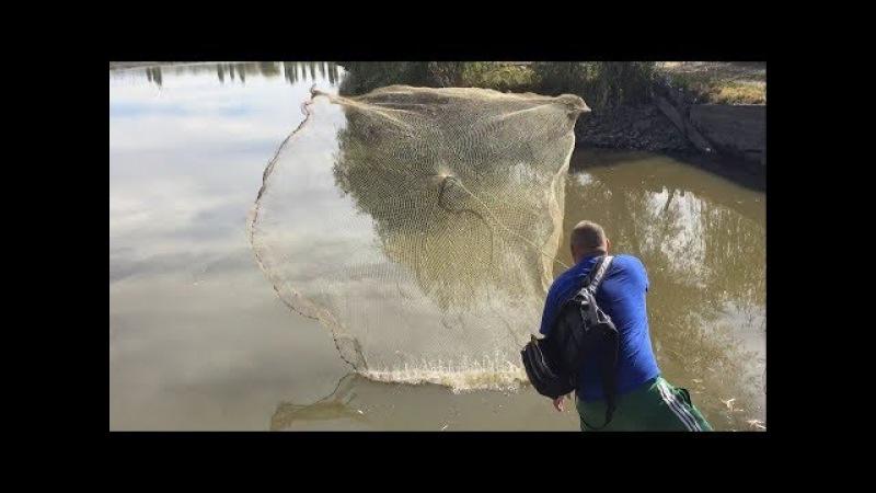 12 кг рыбы за один заброс кастинговой сети