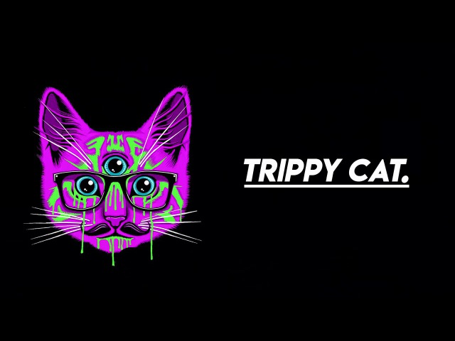 🔥 CORNER 🔥 Best Of Trippy Cat 2017 Summer Mix | Minimal Techno