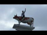 Поездка в Мраково и Красноусольск. Памятник корове, страусиная ферма