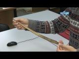 В музее мамонта журналистам показали наконечник копья, найденного в скелете мам...