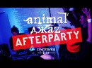 Animal Джаz AfterParty Popravka Bar 2017