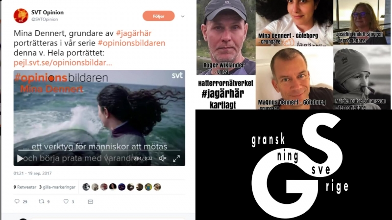 Johan får skrattanfall när SVT-s chef blåljuger