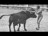 Joselito El Gallo por Paco Aguado