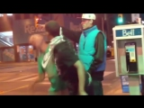 Street Fight Vines #252
