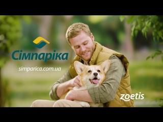 Симпарика (Simparica) - таблетки от блох и клещей для собак