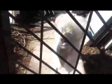 video_2018-04-10_16-55-09