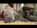 Kenyan ranger caring for northern white rhino orphan