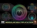 VMT 038 HOUDINI Modular Multiplication