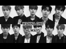 RUSB WANNA ONE - Always