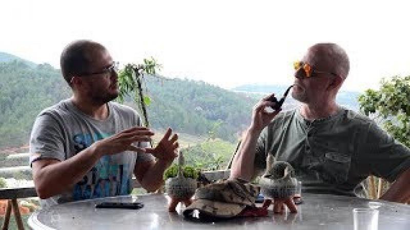 Вьетнамский кофе: беседа на веранде