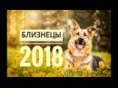 БЛИЗНЕЦЫ 2018. Самый точный гороскоп онлайн для всех