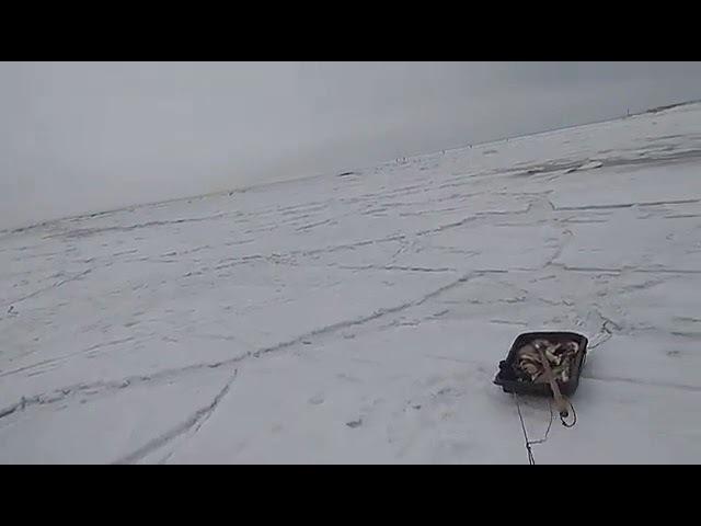 Волна ломает лёд