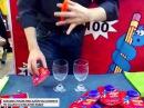 Пушистик Байла РФ обучающее видео