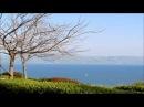 Озеро Кинерет Галилейское море