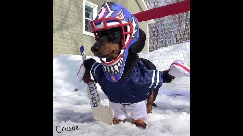 Crusoe Goalie Practice! coub