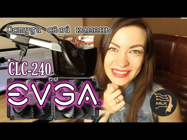 EVGA CLC 240. Обзор » Freewka.com - Смотреть онлайн в хорощем качестве