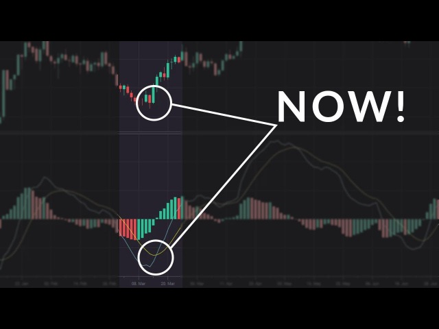 The Best Times to Use the MACD Indicator