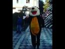Весёлый Мишка