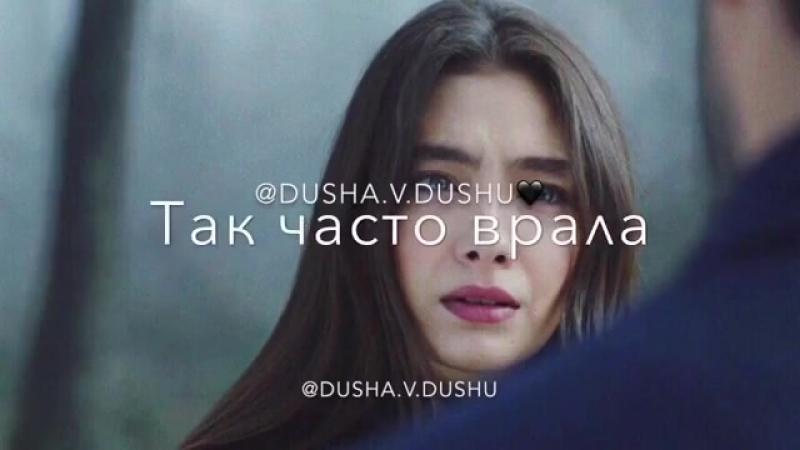 Dusha.v.dushuBg_tIjbHqTf