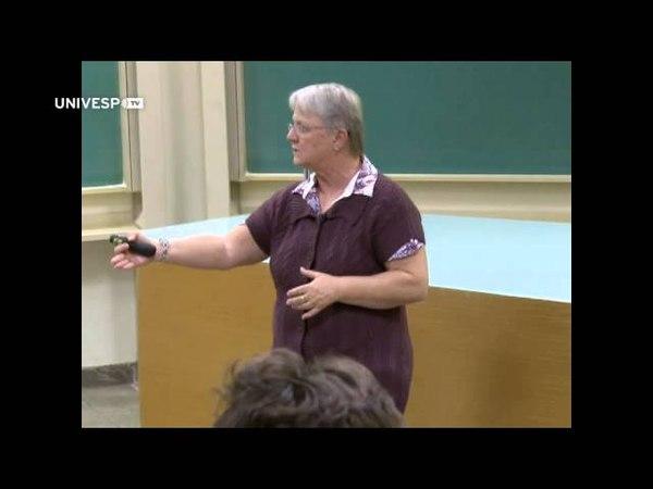 Física IV - Pgm 51 - Quarks, léptons e o big bang - Parte 01