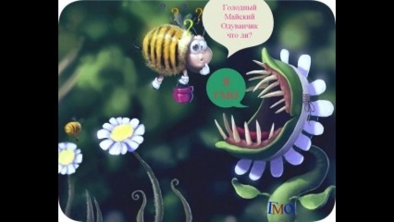 ГМО, что это такое? Давайте внесем ясность в этот непростой вопрос! Часть 1.