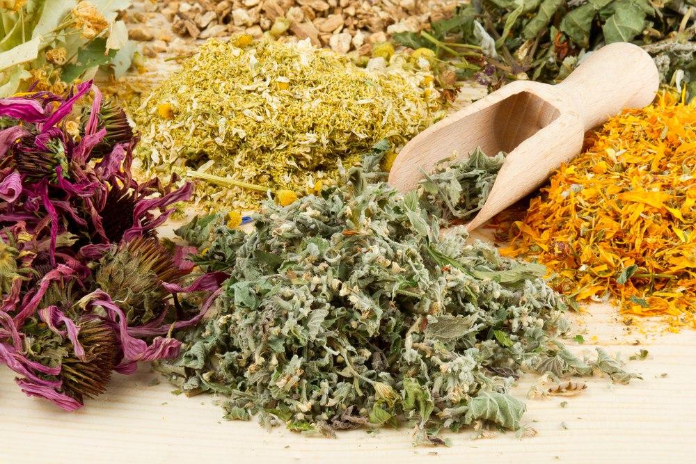 Травник продавал пациентам вместо лечебной травы марихуану
