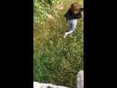 Алсу прыгает