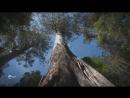 Австралия - Путешествие во времени (4). Большой остров.