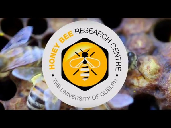 UoG's Honey Bee Research Centre