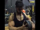 Прокачка грудных мышц   // STRONG DIVISION