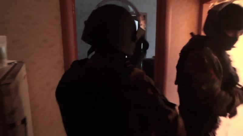 Задержание сторонников террористов в Петербурге